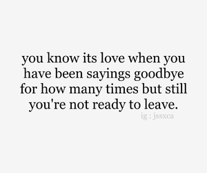 crush, love quote, and quote image