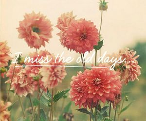 day, flowers, and miss you image