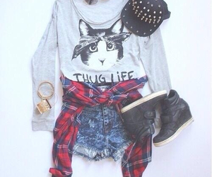 cat, fashion, and outfit image