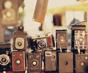 photo, photography, and vintage image