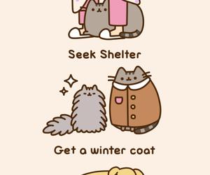 pusheen, cat, and cute image
