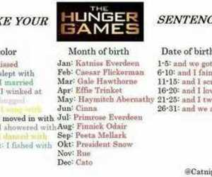 funny, sence, and the hunger games image