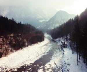 Alps, forest, and ice image