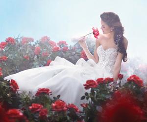 dress, rose, and wedding image