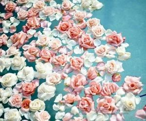 beautiful, flowers, and sweet image