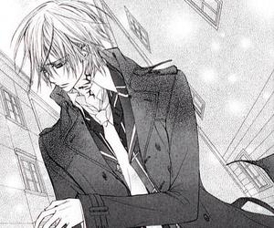 vampire knight, manga, and anime image