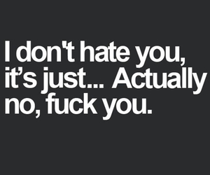 fun, hate, and quote image