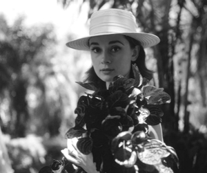 audrey hepburn, beautiful, and lovely image