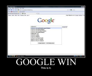 avpm, find, and google image