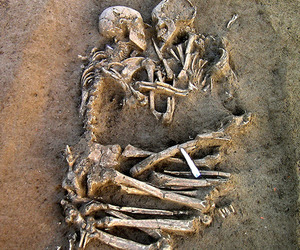 bones, couple, and casal image