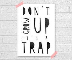 quote and trap image