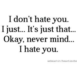 hate, funny, and quote image