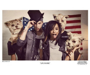 america, american flag, and Ash Stymest image