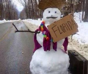 florida, frosty, and funny image