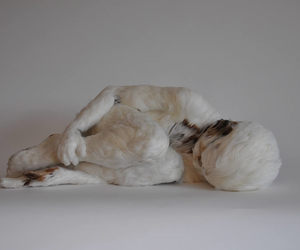 lucy glendinning and feather child image