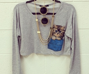 cat, style, and outfit image
