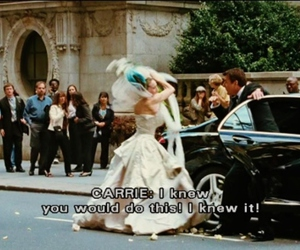 Carrie Bradshaw, hate, and sarah jessica parker image