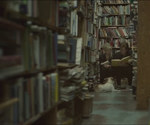movie, beginners, and film image