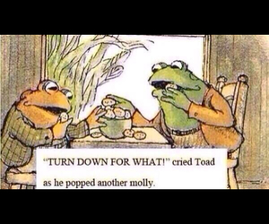 funny, molly, and toad image