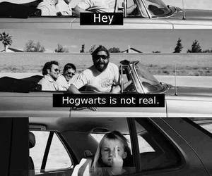 bitch, fuck you, and harry potter image