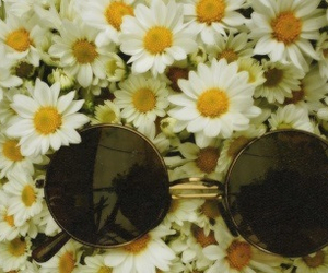flowers, hipster, and glasses image