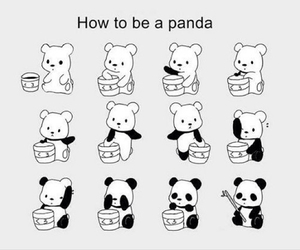 black and white, panda, and draw image