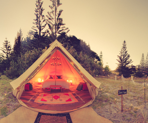 bed, camping, and Dream image
