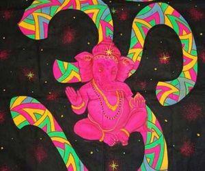 elephant image