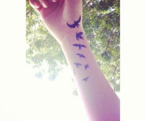 bird, fly, and tattoo image