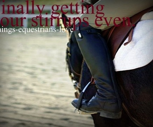 equestrian, horses, and quotes image