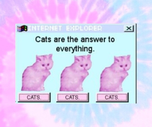 acid, cats, and pink image