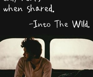into the wild, quotes, and happiness image