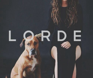 lorde, dog, and music image