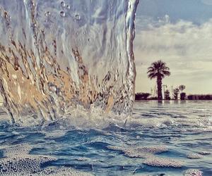 beautiful, blue, and palms image
