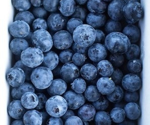 blueberry, food, and fruit image