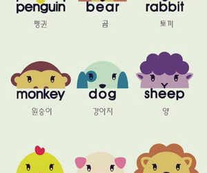 animals, korean, and hangul image