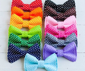 bow, colorful, and pink image