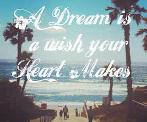 quote, wish, and Dream image