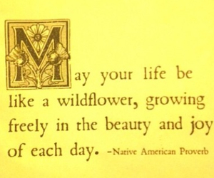 flower, quote, and wildflower image