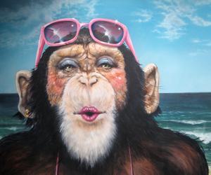 funny, monkey, and illustration image