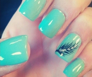 nails, feather, and blue image