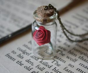 book, necklace, and rose image