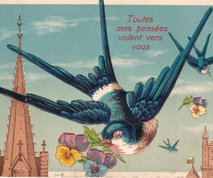bird, ephemera, and flowers image