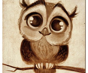 art, owl, and cute whoooo image