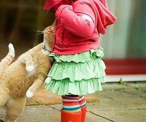 cat, legocube, and cute image