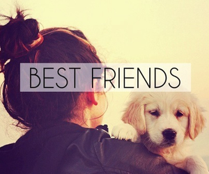 all, dog, and friend image