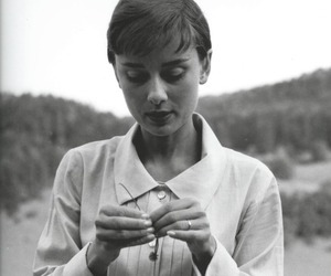 black and white, flower, and audrey hepburn image