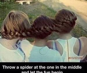 funny, spider, and hair image