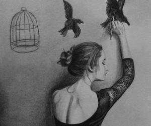 birds, cage, and drawing image