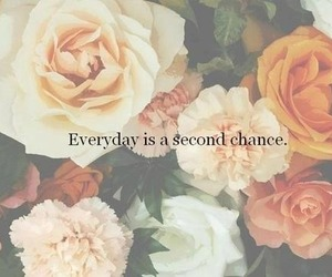 flowers, quote, and chance image